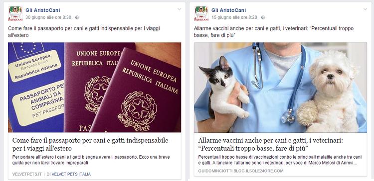 aristocani_Post2